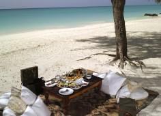 Vamizi Island Beach Picnic