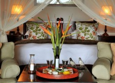 Savanna Game Lodge Room