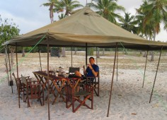Afternoon tea on mobile safari