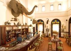 Pemba Beach Hotel Guest Bar